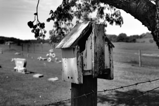 IMG_1460 Bird House at cemetery c..jpg