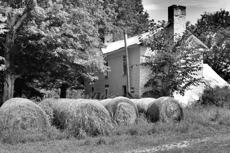 IMG_1485 old place and hay c.jpg