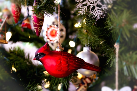 IMG_0331 Christmas Ornaments