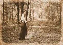IMG_6051 Lady of the Woods albumen