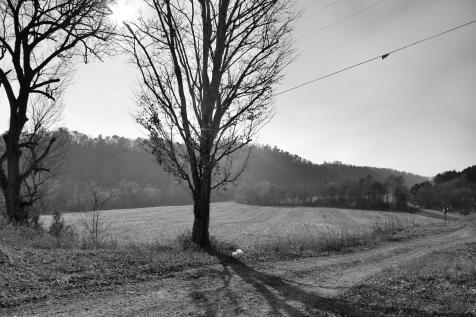 IMG_6135 dirt road